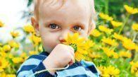 Allergija-u-detej-prev