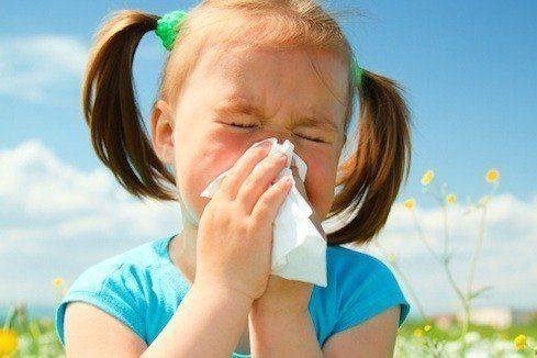 Симптомы аллергии удетей
