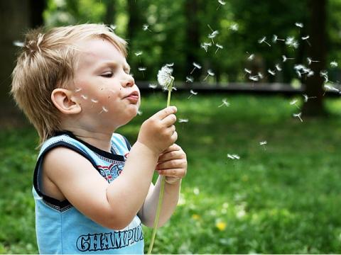 Аллергия: что делать иккому обращаться